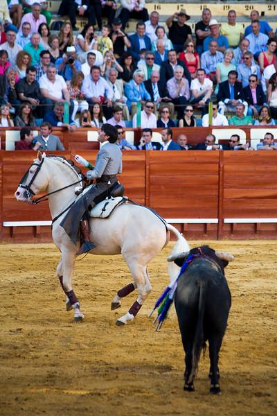 Bullfighting H10.jpg