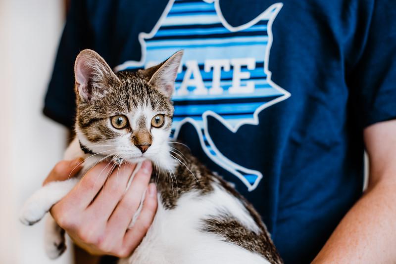 October 26, 2018 cat day DSC_9868.jpg
