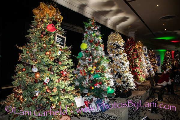 Christmas Tree Lane for Act for MS by Lani and Alyssa 11/28/18
