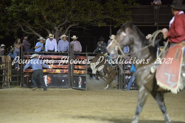 PM Saddle Bronc