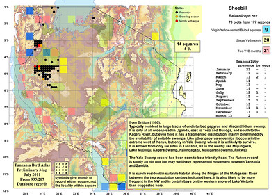 Tanzania Bird Atlas Maps