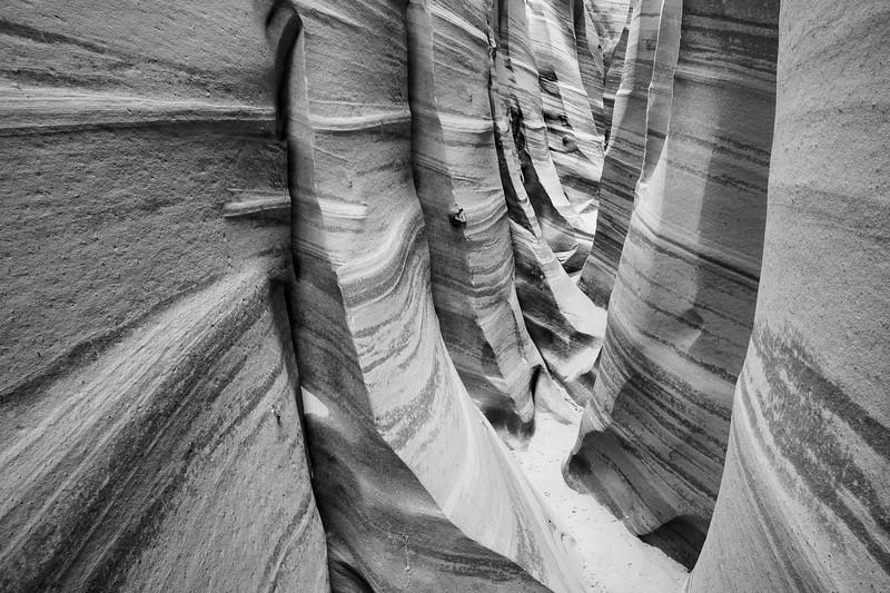 Zebra Canyon, Escalante National Monument, Utah, USA