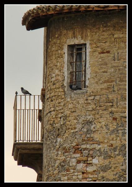 2009-06-UM-Bevagna-03-part.jpg