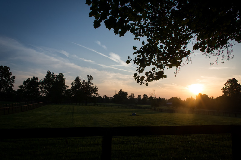 Scenic sunrise at Gainesway Farm 8.29.14