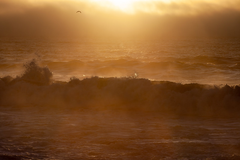 Sunset 4, Pescadero State Beach, California, 2010