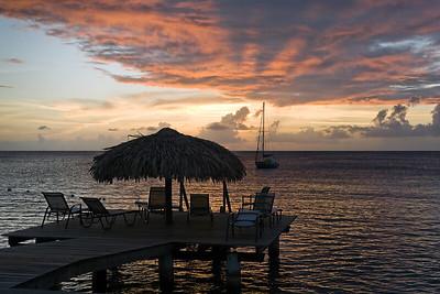 Bonaire '11 Prints