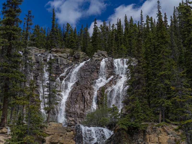 Waterfall in forest, Tangle Falls, Icefields Parkway, Jasper, Alberta, Canada