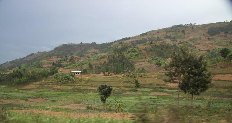 Scenery along the road to Ruhengeri