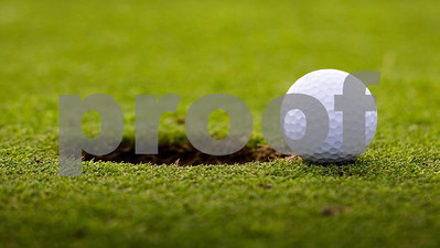 canton-wins-regional-golf-tournament