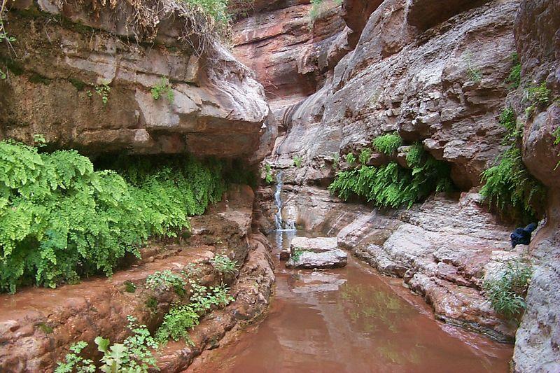 Saddle Canyon   (May 29, 1999, 09:54am)