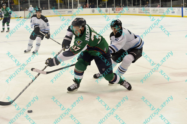 St Charles Chill vs Denver Cutthroats - 12/6/13