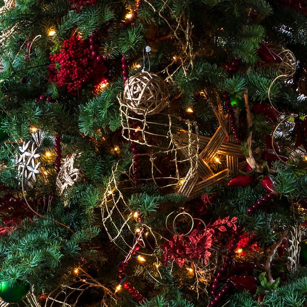 cchristmas lights-7556.jpg