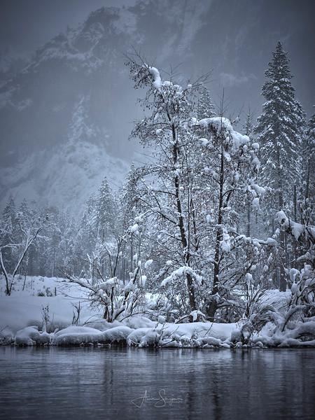 Yosemity NP, California.jpg