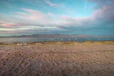 A Day at the Salton Sea