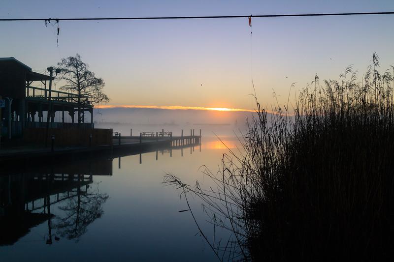 Bayou at Dawn