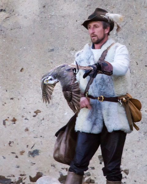 Falconry Show at Schloss Rosenburg, Austria