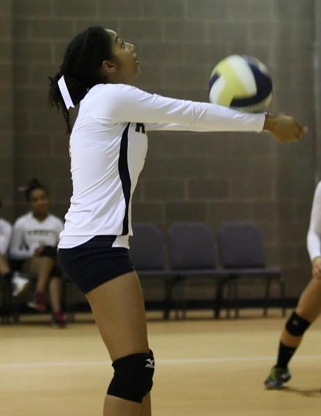 VCA-Volleyball-192.jpg