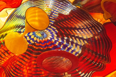 Chihuly Garden and Glass 2018