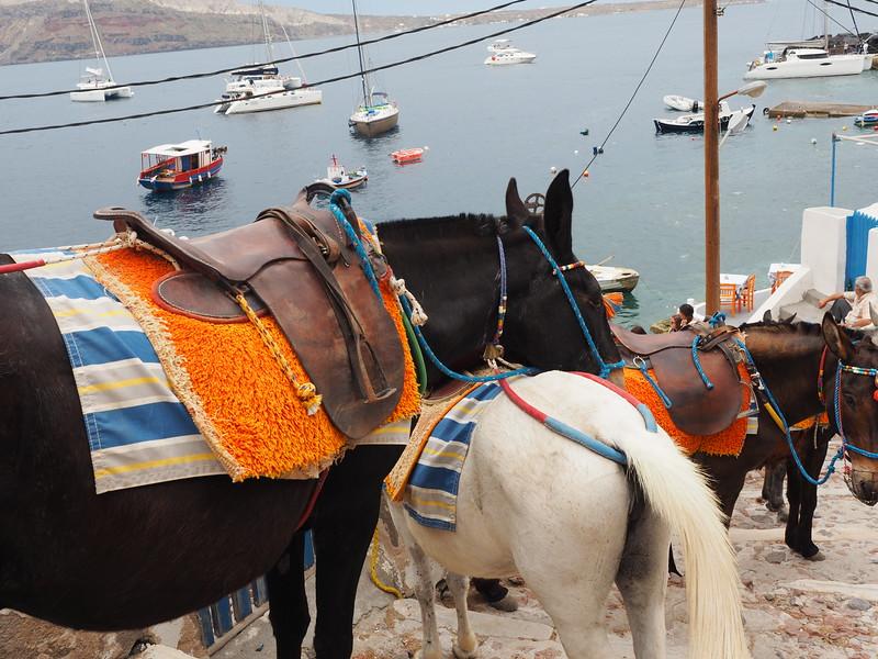 Santorini - 2-17556.jpg