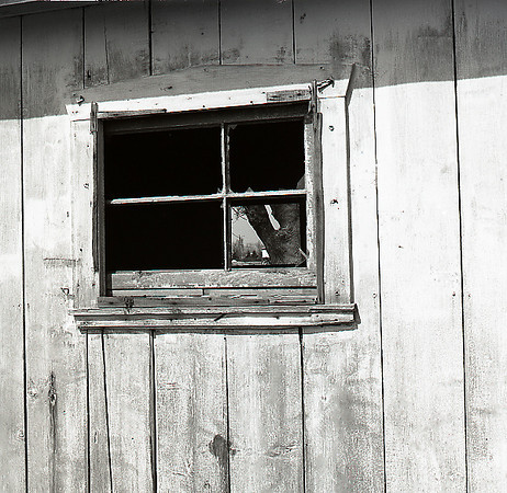 47236619_window