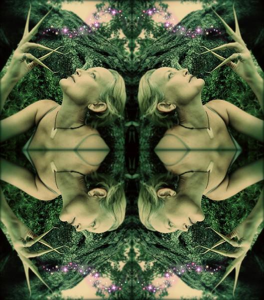 image3A61992_mirror3.jpg