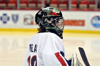 PeeWee AA - Sylvania Maple Leafs