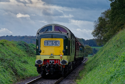 Mid-Hants Railway Diesel Gala: October 2017