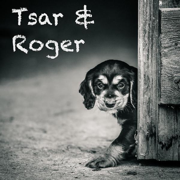 Roger-Gallery-Icon.jpg