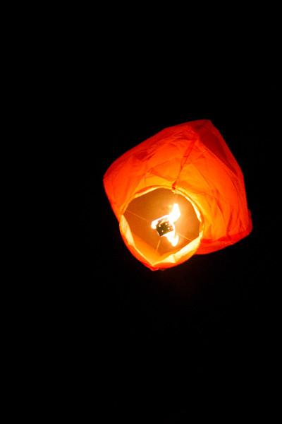 Holly Days Lantern Launch-29.jpg