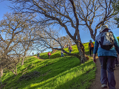 Anza Hike at Coyote Valley OSP - Jan 2020