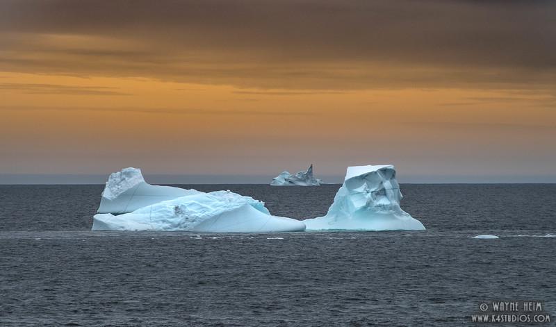 Icebergs at Sea  Photography by Wayne Heim