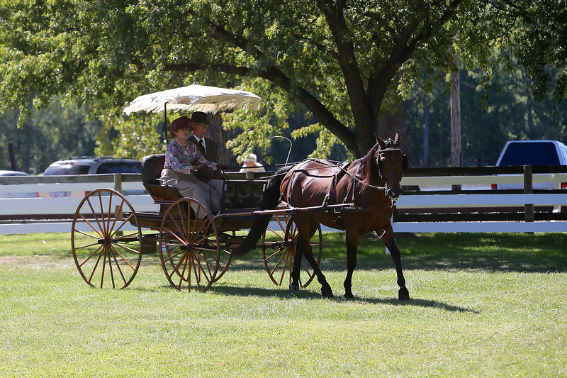 2014 VILLA LOUIS CARRIAGE CLASSIC
