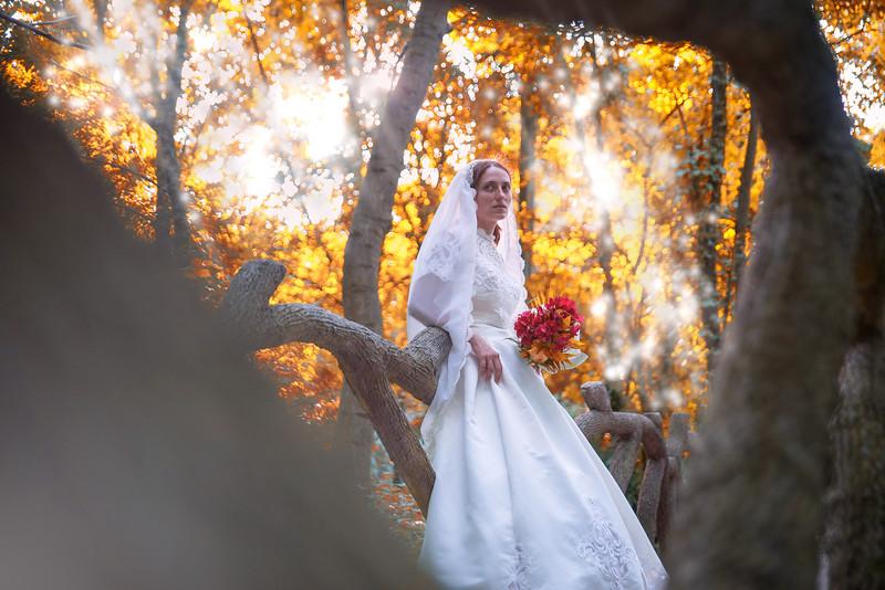 Fotograf profesionist pentru nunta si botez Timisoara (164).jpg