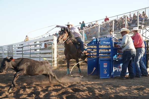 2021 Tillamook Rodeo