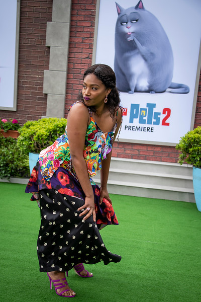 WESTWOOD, CALIFORNIA - JUNE 02: Tiffany Haddish attends the Premiere of Universal Pictures' 'The Secret Life Of Pets 2' at Regency Village Theatre on Sunday, June 02, 2019 in Westwood, California. (Photo by Tom Sorensen/Moovieboy Pictures)
