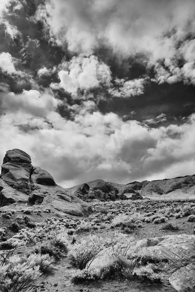 Nevada Las Vegas Red Rock Canyon0006.jpg