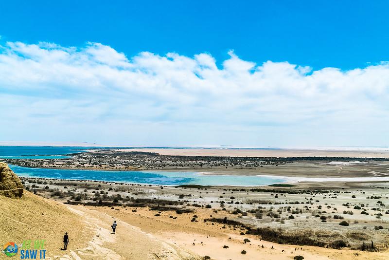 Wadi-El-Hitaan-02529.jpg