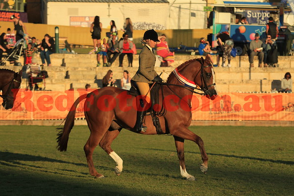 2014 09 30 Perth Royal Show Combined Warmbloods Ridden