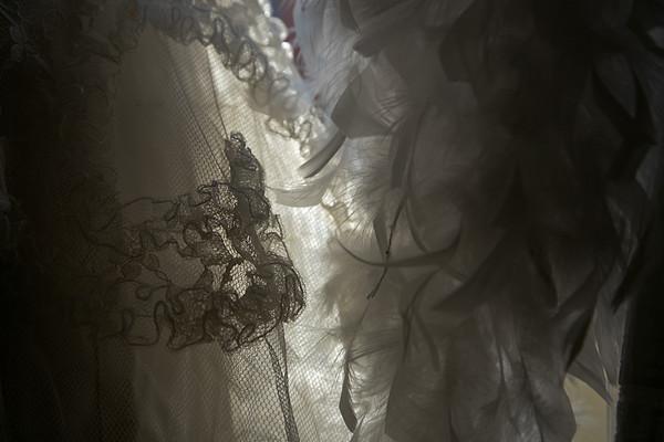 IMG_7838-Lace--www.jpg