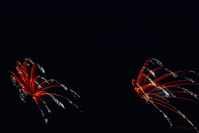0705-0719 LOW Fireworks -Dark Gold Spiders Duo-5389.jpg