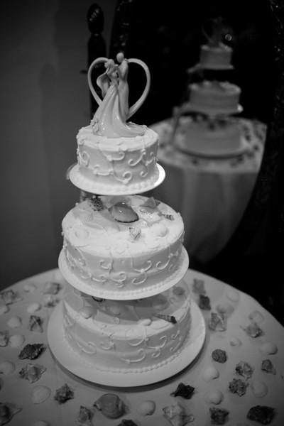 Travis & Jennifer Wedding Reception