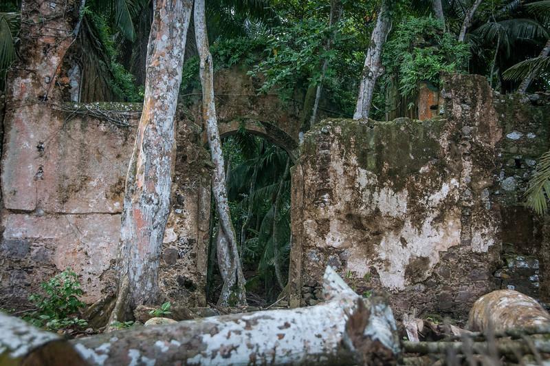 Ruins near the beach in Principe, Sao Tome and Principe