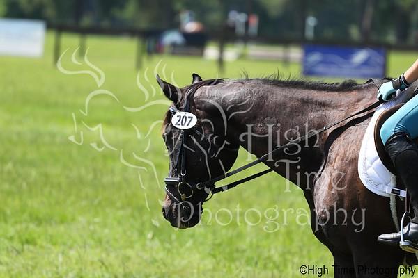 2021 July Horse Trials