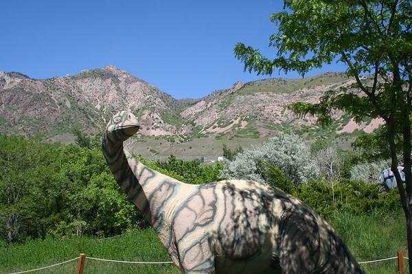Dinosaur Park May 20-05