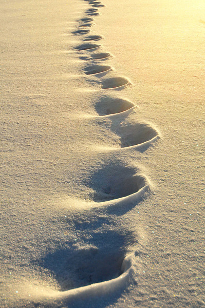 Foot steps into the sun2   .jpg