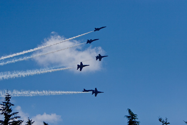 Blue Angels '08