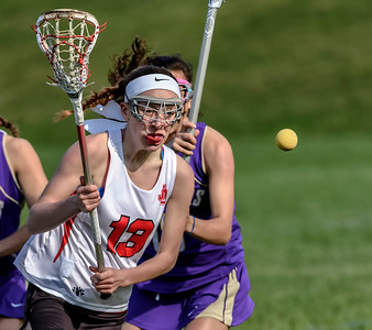 Jamesville-DeWitt Girls Lacrosse 2015
