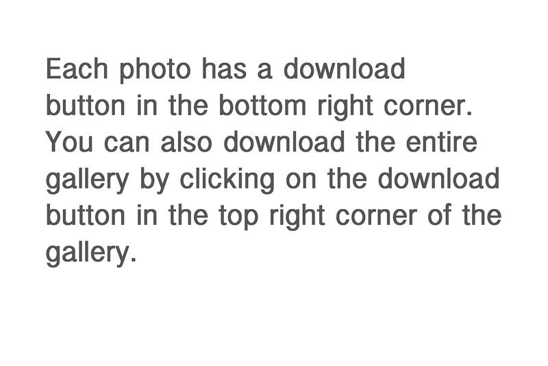 download instructions.jpg