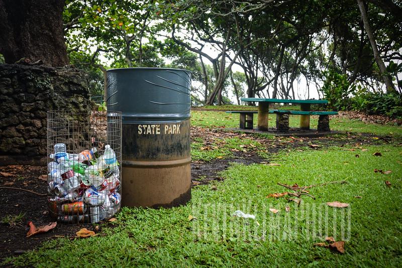 Maui133.jpg