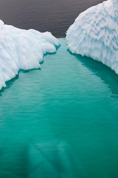 Antarctica 2015 (58 of 99).jpg